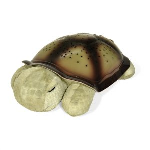 Twilight Turtle by Cloud b